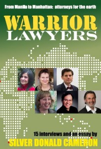 warrior-lawyers